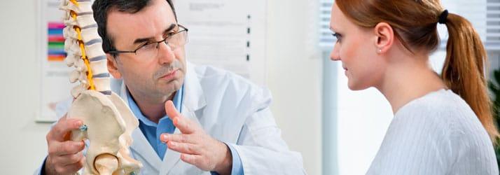 Chiropractie Rosmalen GN Arts met wervelkolommodel